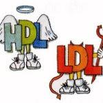 Colesterol – Qual a diferença entre HDL e LDL?
