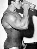 A Síntese de Proteína e os Músculos